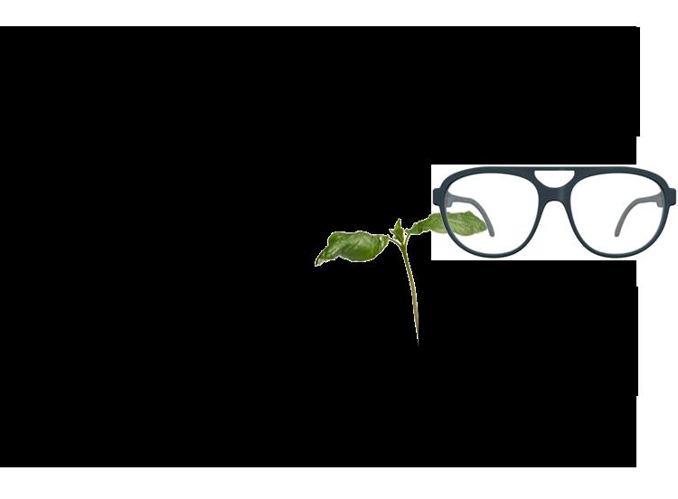 Optiker Billek  brillenausbohnen